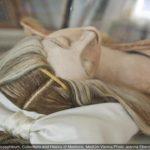 【妖艶すぎる人体模型】はなぜ作られた?18世紀ヨーロッパ、スペーコラ美術館