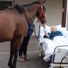 老人の最期の願いに答えて、ホスピスに馬がやってくる【イギリス】