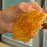 寝室の壁から大量のはちみつが! 壁をはがしたら床から天井まで全部ハチの巣
